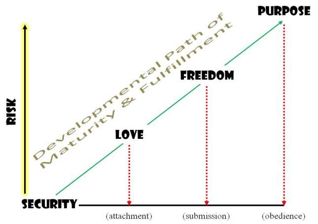 Maturity_Development
