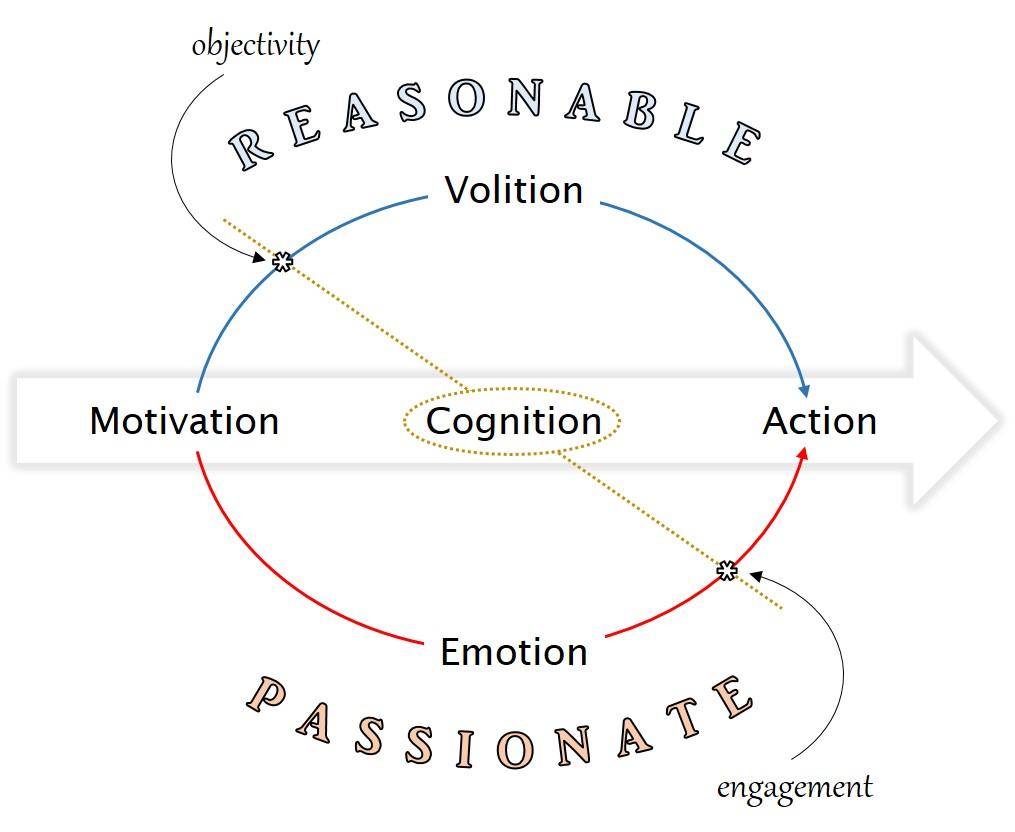 Reasonable_Passionate