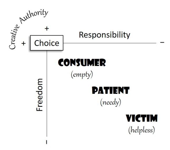 Consumer_Patient_Victim